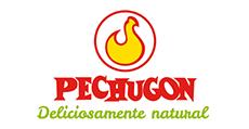 Diseño web Pechugon